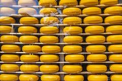 Quesos de Holanda en la exhibición queso Edam Países Bajos foto de archivo libre de regalías