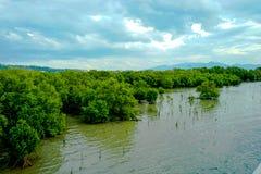 Questa immagine è circa bello paesaggio, Tailandia Fotografie Stock