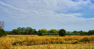 Questa immagine è circa la Tailandia su paese, Tailandia Fotografia Stock