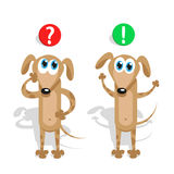 Question and answer in the mind at a pet puppy Royalty Free Stock Photography