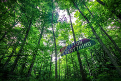 Question Everything sign in forest Stock Photos