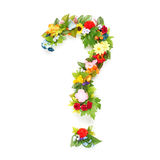 Question mark made of leaves & flowers Royalty Free Stock Photos
