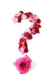 Question mark,rose petals Royalty Free Stock Photos