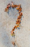 Question mark. On sidewalk created by falling leaves Stock Photos