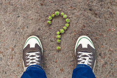 Question sign composed from small green chestnuts Stock Image