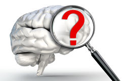 Questionmark on magnifying glass and human brain Royalty Free Stock Image