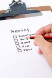 Questionnaire Royalty Free Stock Image