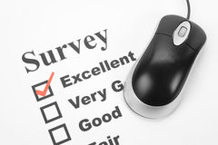 Questionnaire and computer mouse Royalty Free Stock Photo