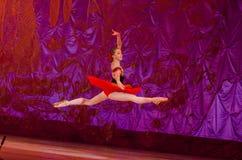 Questo racconto eterno di balletto Fotografie Stock