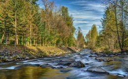 Washington State River in the Speing Royalty Free Stock Photography