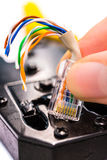 Quetschverbinden Sie Verbindungsstück des Werkzeugs rj45 auf dem weißen Hintergrund Stockfotos