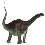 Queue de dinosaure de Diamantinasaurus Photos libres de droits