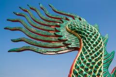 Queue de dragon Photos stock