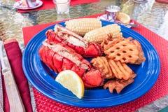 Queue de homard fraîche de Maine d'un plat préparé avec des fritures de beurre, de maïs et de pomme de terre Photos libres de droits