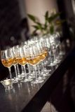 Queue of glasses Stock Images