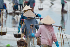 Queue of workers on salt-mine. Few workers carrying baskets full of salt at salt-lake in Vietnam Stock Photography