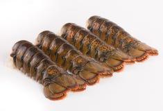 Queues de homard Photo libre de droits