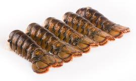 Queues de homard Photos libres de droits