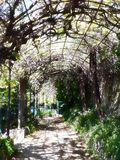 Quezzi`s garden, a little treasure stock photos