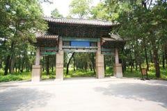 Qufu Kong Lin stock afbeeldingen
