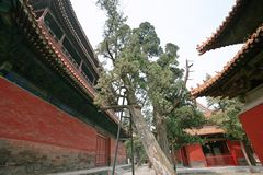 Qufu three holes. Qufu Confucian Temple, located 300 meters west of Drum Tower in central Qufu, is a memorial temple for Confucius, a famous thinker and educator Stock Photos