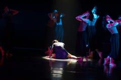 Qui est le vendeur 3--Âne de drame de danse obtenir l'eau photographie stock libre de droits