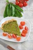 Quiche degli spinaci Immagine Stock Libera da Diritti