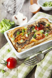 Quiche lorraine con il pollo, i funghi ed i broccoli Fotografia Stock Libera da Diritti