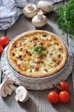 Quiche pie with chicken Stock Image