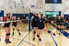 Quick and agile move keeps ralley alive. Buena High School`s setter, Kayla Callahan, reaches for the ball during match against Newbury Park during Westlake royalty free stock photography