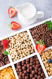 Quick breakfast cereals Royalty Free Stock Photos