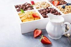 Quick breakfast cereals Stock Images