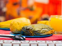 A quick breakfast contain quimbolito and bolon served on a blue plate, traditional andean food concept.  Stock Photos