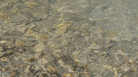 Quick clean water flow in the river in shallow water, through which can be seen big and small flat stones stock video footage