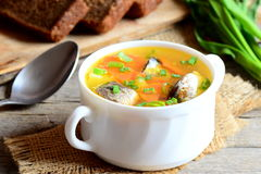 Quick, easy and delicious fish soup. Homemade fish soup with potatoes, carrots and green onions in a bowl Royalty Free Stock Photo