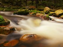 Quick foamy stream in motion over big mossy boulders. Mountain river with dark cold water, autumn is coming. Quick stream in motion over big mossy boulders stock photos