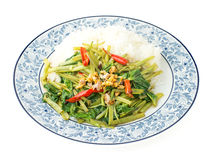 Quick-fried water spinach with chili. Soy sauce and rice Stock Images