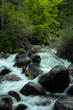 Quick Mountain River Royalty Free Stock Images