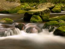Quick mountain stream in motion over big mossy boulders. Quick stream in motion over big mossy boulders. Mountain river with dark cold water, autumn is coming stock image