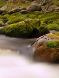 Quick stream in motion over big mossy boulders. Mountain river with dark cold water, autumn is coming stock photos