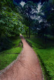 Quiet alley in the park Royalty Free Stock Photos