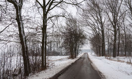 Quiet asphalt road in a wintry snow landscape Stock Photos
