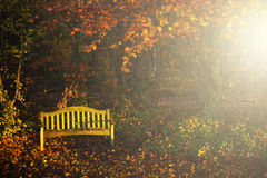 Quiet autumn Royalty Free Stock Photography