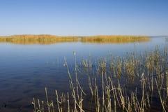 Quiet autumn lake Stock Images