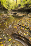 Quiet Autumn Pool on Buttermilk Creek Royalty Free Stock Image