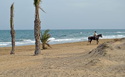 Horse Riding Along A Beach. An almost deserted beach apart from  a horse and rider Stock Photography