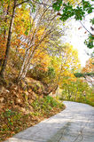 The quiet bend path _ autumnal scenery Stock Photo