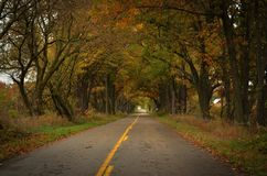 Michigan Backroad. A quiet byway in southern Michigan during the fall season royalty free stock image
