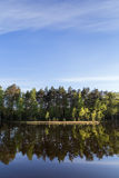 Quiet and calm lake and reflection of a forest Royalty Free Stock Photography