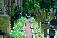 Quiet cemetery. Bench on quiet cemetery surrounded by pine trees, flowers and wooden crosses royalty free stock photos